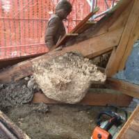 Lors de la fase de démontage il apparait fréquemment des surprises ici un nid de guêpes