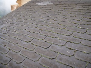 Mousse sur une toiture fibro-ciment Eternit