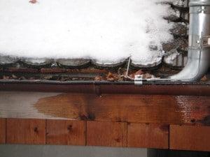 Manque d'entretien: chéneau bouché par des feuilles mortes