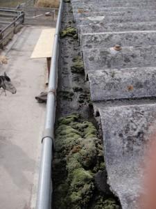 Les chéneaux mal entretenus gardent de l'humidité ce qui réduit leur durée de vie